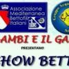 1° Seminario Italiano sulle selezioni dei Show Betta 17 Novembre 2011